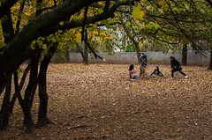 Autumn is my playground (damar47) Tags: streetphotography streetstyle streetview street park nature leaves autumn playing play children kids boysandgirls colori colors autunno foglie giochi bambini albero tree pentax pentaxart pentaxian pentaxk30 bologna italy italia italian green yellow recreation