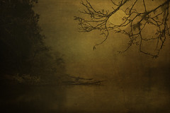 First glimpse of a new world. (robn848 - gone for now) Tags: texture lake moon heron old evening