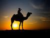 India (mokyphotography) Tags: india desert rajasthan thar deserto sabbia sand sunset tramonto landscape canon travel viaggio