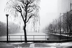 quiet ... (StefanSpeidel) Tags: chiyodaku ginza hibiya japan stefanspeidel tokyo snow elitegalleryaoi bestcapturesaoi aoi