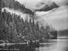 Alaskan Fjord (lorinleecary) Tags: alaska clouds landscapes reflections trees blackwhite mist shore water