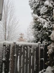 Keep Out --- Snow! (jamica1) Tags: gate snow winter kelowna okanagan bc british columbia canada