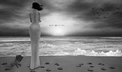 You remind me of something...I don´t know what it is (Vanka Machiavello) Tags: kopfkino uc united colors angel cream jian tableau vivant sundowner emotive sea water ocean beach sky mar océano playa agua cielo dress puppy flowers seagulls