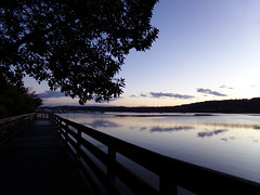 Liberty Bay at dusk (Nikki Cleveland) Tags: dusk sunset water sky twilight libertybay poulsbo washington wa pacificnorthwest trees photography boardwalks boardwalk view bay waterview waterphotography washingtonstate kitsap kitsapcounty kitsappeninsula purple blue skies peace peaceful peacefulviews clouds reflection pnw scenery landscapes