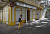 Savoir se fondre dans le décor (Thierry.Vaye) Tags: pointàpitre streetshot photoderue guadeloupe gwada