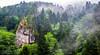 Sisler İçinde (Foggy) (SBastan) Tags: kalınçam karadeniz kalınçammahallesi turkey türkiye travel trabzon tamron2470mmf28divcusd tonya trees ağaçlar mysticforest mistikorman yeşil green mountain mountainlandscape mountains dağ dağmanzarası anatolia anadolu doğukaradeniz easternblacksea asia bulutlar clouds fog sis marvelous muhteşem colors doğa deepforest foliage gorgeous harika huzur fırtına landscape manzara nature nikon nikond610 orman rain rainy yağmur yağmursonrası splendid serhatbaştan