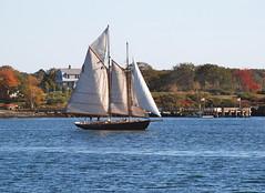 Portland Maine Mail Boat trip (pag2525) Tags: coast island sailboat portland maine me mail boat trip ocean sea water newengland fall cruise atlantic