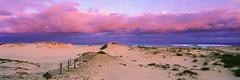 Light above the dunes (Martin Canning) Tags: 617 australia fuji fujig617 fujifilm g617 leefilters martincanning martincanningcom nsw newcastle nobbysbeach velvia50 clouds dunes film landscape light mediumformat newsouthwales panorama panoramic sand sanddunes sunset velvia