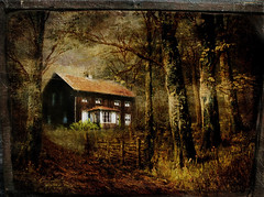 Where the witches live. (BirgittaSjostedt- busy with family) Tags: house forest fantasy creation texture paint painted birgitatsjostedtfairy fairytale windowwednesday building tree abandoned
