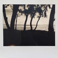 Sun is getting down. (miroir.photographie) Tags: film instant istillshootfilm filmisnotdead analog argentique neworiginals polaroidoriginals polaroidspectra polaroid