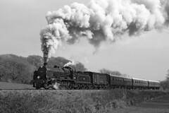 31806 SR 2-6-0 U Class (Roger Wasley) Tags: 31806 sr 260 u class southernrailway steam locomotive swanage railway trains railways dorset gb uk mono blackandwhite monochrome