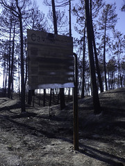 Burnt road sign (Martin Lopatka) Tags: portugal holiday vacation landscape forest burnt trees forestfire nature roadsign