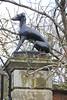 IMG_3534 (Jeff And) Tags: salisbury wiltshire hound dog sculpture gates gateposts malmsburyhouse
