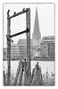 Rostock (georgsfoto) Tags: heimat rostock altstadt petrikirche petriturm kormorane unterwarnow ufer digital fujixpro1 nikonseriese28100 monochrom bw blackandwhite schwarzweis