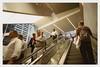 ... (Maggie J Lee) Tags: minoltaxe7 film kodak portra 400 photography newyork newyorkcity nyc epsonv600 rokkor 24mm urbanarchitecture wtc worldtradecenter oculus santiagocalatrava design commute people