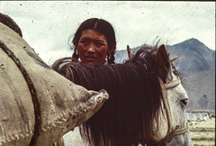 A nomad in Chang Thang (rvjak) Tags: himalaya woman femme horse cheval india inde nomad nomade f3 nikon argentique film pellicule