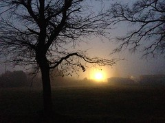 Early in the foggy morning (Le.Patou) Tags: matin brume tôt éclairage nocturne lumière lueur ombre morning fog light lightning early shadow pissarro