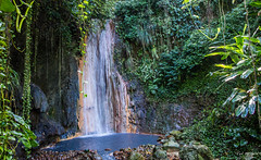 2017 - Regent Cruise - St. Lucia - Diamond Botanical Gardens Waterfall (Ted's photos - For Me & You) Tags: 2017 cropped nikon nikond750 nikonfx regentcruise stlucia tedmcgrath tedsphotos vignetting diamondbotanicalgardens diamondwaterfall diamondbotanicalgardenssoufriere soufrierediamondbotanicalgardens waterfall diamondbotanicalgardenandwaterfall