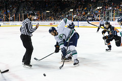 "Kansas City Mavericks vs. Florida Everblades, February 18, 2018, Silverstein Eye Centers Arena, Independence, Missouri.  Photo: © John Howe / Howe Creative Photography, all rights reserved 2018 • <a style=""font-size:0.8em;"" href=""http://www.flickr.com/photos/134016632@N02/38577427180/"" target=""_blank"">View on Flickr</a>"