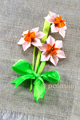 origami narcissus (polelena24) Tags: origami flower narcissus daffodil modular