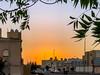 20180107-IMG_5520 (Tai - Le) Tags: jeddah makkahprovince saudiarabia sa