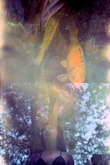 (auspices) Tags: 35mm film photography swap