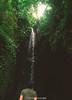 _DSC4533 (UdeshiG) Tags: bali indonesia asia waterfalls uluwatu seminyak tanahlot nikon ubud kuta paddy dogs balidogs travel traveltheworld
