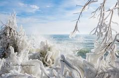 03-52/2018 ~ Winter Beauty (DinsPhoto) Tags: winterinwisconsin winterwonderland winterlakemichigan lakemichigan lakemichiganstorm icestorm ice week42018 52weeksin2018 weekstartingmondayjanuary222018 week32018 weekstartingmondayjanuary152018