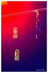 Hook line and sinker - HSS! (JSB PHOTOGRAPHS) Tags: d2x299600001 copy beer cans wire powerline hook hooklineandsinker sliderssunday nikon d2x eugeneoregon altonbakerpark pabstblueribbon hss