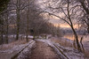 A Winter Morning (Tracey Whitefoot) Tags: 2018 tracey whitefoot nottingham notts nottinghamshire colwick park snow winter february sunrise morning path track light cold gate tree trees