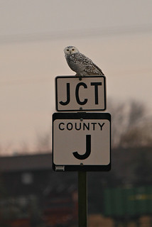 Forget About Your Cares, it Is Time to Relax at the Junction