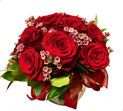 "#05V $75 One Dozen Compact in rose bowl • <a style=""font-size:0.8em;"" href=""http://www.flickr.com/photos/39372067@N08/39276019525/"" target=""_blank"">View on Flickr</a>"