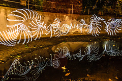Whip Cracking (stephenk1977) Tags: australia queensland qld brisbane alderley enoggera creek reflection night light painting brushes art whip fibre optic strobe nikon d3300