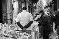 "Bologna (Italy) - Il ""quadrilatero"" - Via Drapperie (Massimo Battesini) Tags: bologna emiliaromagna italia it olympusem5markii olympus em5markii panasoniclumixgxvario35100f28 panasonic lumix panasonic35100mmf28 market marché mercato bazar bazaar centrostorico zentrum centreville centromedievale centremédiéval medievalcenter centromedieval città ville city stadt town ciudad photographiederue streetphotography fotografiaderua photosdelavie escenacallejera ilquadrilatero viadrapperie italy italie italien europe europa pesce pescheria poisson poissons poissonerie"