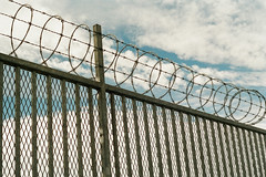 (Casey Lombardo) Tags: longbeach longbeachca infrastructure fence fences fencing razor razorwire concertinawire wires donotenter expired expiredfilm film filmphotography filmgrain filmscans colorfilmphotography kodak kodakfilm kodakgold kodakgold200