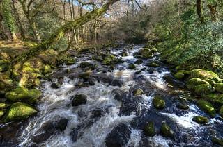 The River Plym at Shaugh Bridge, Dartmoor