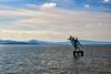 Monmento ai caduti a nel Lago Trasimeno (diegozizzari) Tags: lago lagotrasimeno trasimeno passignano lungolago cielo nuvole umbria monumento montagne