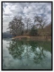Am Altrhein (TitusT1960) Tags: mirror iphonese iphone tree river water clouds see boot wolken himmel spiegelung bäume wasser speyer altrhein rheinlandpfalz rhein