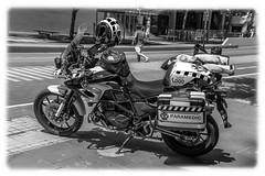 BMW (wollemigrape477) Tags: bmw beemer paramedic gs800 motorbike emergencyservices ambulance victoria melbourne australia nikon d7100 18300mm street monochrome blackwhite machines biker sun outdoor panniers satnav helmet road bike roadbike