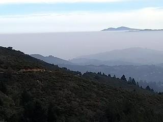 Bay Area Panorama