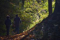 Waterfall in Jura (jmarnaud) Tags: france jura poligny 2017 autumn forest walk countryside waterfall colors kiki noe