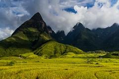 Horská idyla (zcesty) Tags: vietnam25 rýže pole mraky krajina hory hora vietnam dosvěta laichâu vn
