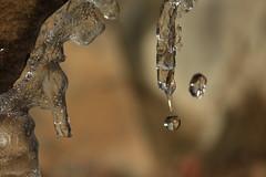 fonte (bulbocode909) Tags: glaçons gel fonte gouttes nature montagnes suisse valais hiver