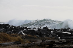 Mountain of Water (Mïk) Tags: swellday january182018 beach hightide 30ftswells pacificocean oceanshoreswa washington notheotherwashington graysharbor graysharbornorthjetty