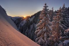 last light (Simon_Bauer) Tags: oberammergau laber nikon nisi bayern bavaria oberbayern germany deutschland trees snow schnee winter kälte sonne sun sunstar tokina ettal nature landscape sunset sonnenuntergang