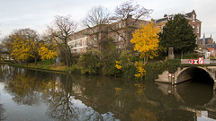 Beautiful Utrecht Canal (HansPermana) Tags: utrecht netherlands niederlande nederland kanal canal water reflection city cityscape citycenter oldtown autumn 2017 november holland trees