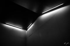 Light (flea_14) Tags: mexico cdmx museum museojumex architecture arquitectura lights light luz lamp concrete composition black white lamparas