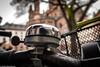 #FlickrFriday - #RingTheBell (J.Weyerhäuser) Tags: mainz krokus moos ringthebell flickrfriday glocke bell fahrrad