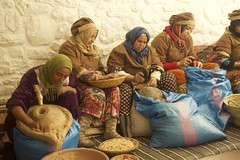 Berber Women processing Argan (TravellingMiles) Tags: morocco ourikavalley atlasmountains