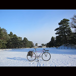 雪雲の切れ間から・・・ thumbnail